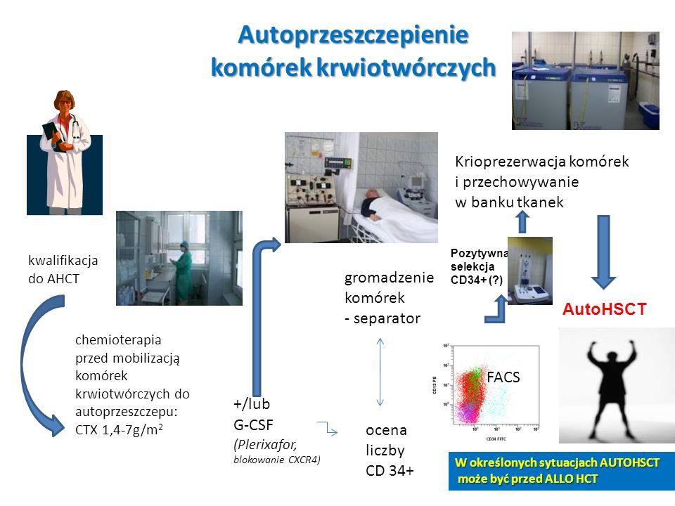 Autoprzeszczepienie komórek krwiotwórczych