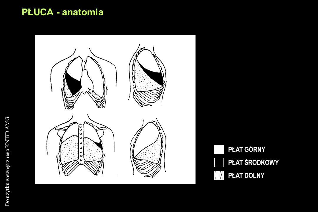 PŁUCA - anatomia PŁAT GÓRNY PŁAT ŚRODKOWY PŁAT DOLNY