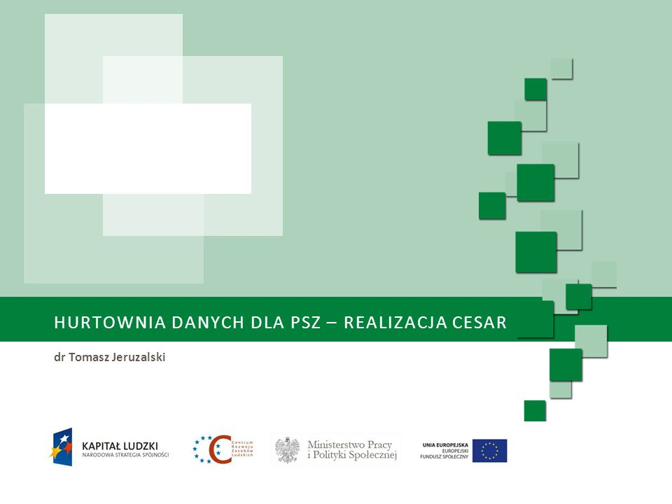 Hurtownia danych dla PSZ – realizacja CeSAR