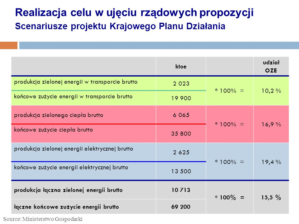 Realizacja celu w ujęciu rządowych propozycji