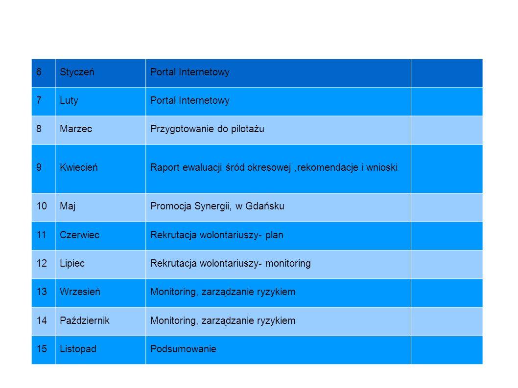 6Styczeń. Portal Internetowy. 7. Luty. 8. Marzec. Przygotowanie do pilotażu. 9. Kwiecień. Raport ewaluacji śród okresowej ,rekomendacje i wnioski.