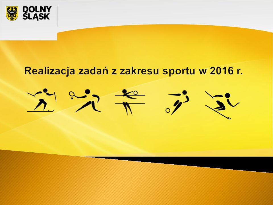 Realizacja zadań z zakresu sportu w 2016 r.