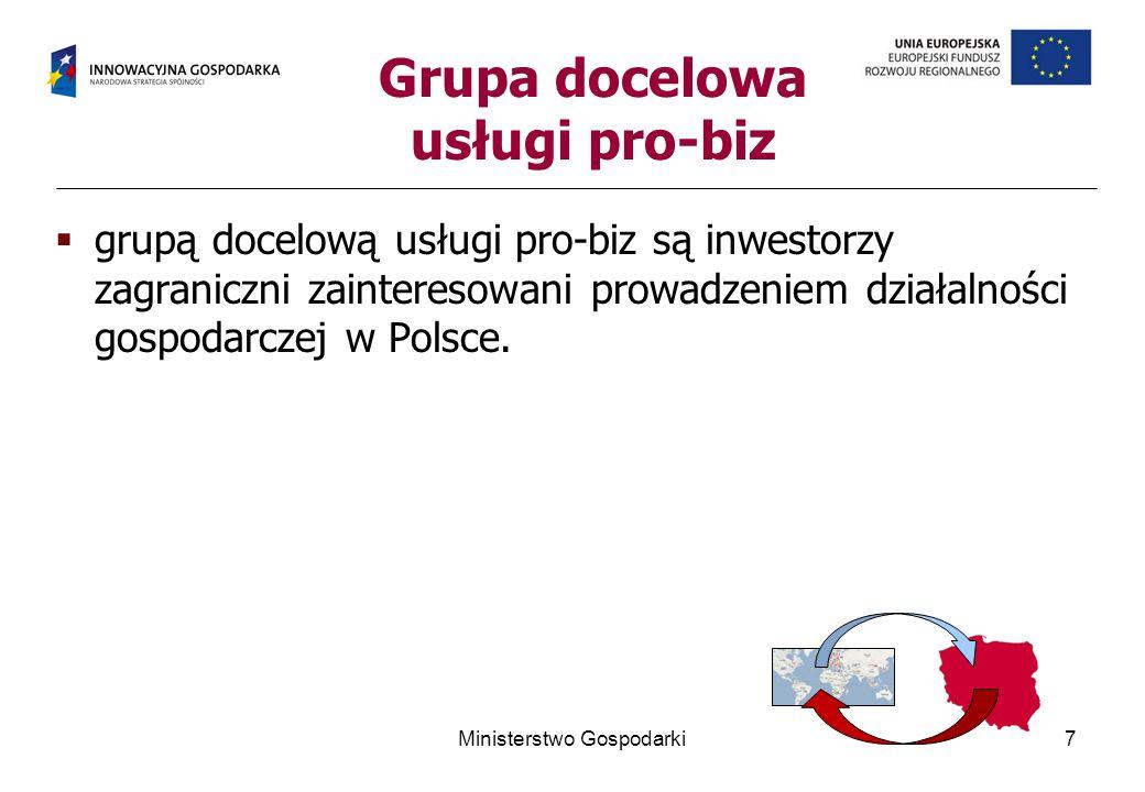 Grupa docelowa usługi pro-biz