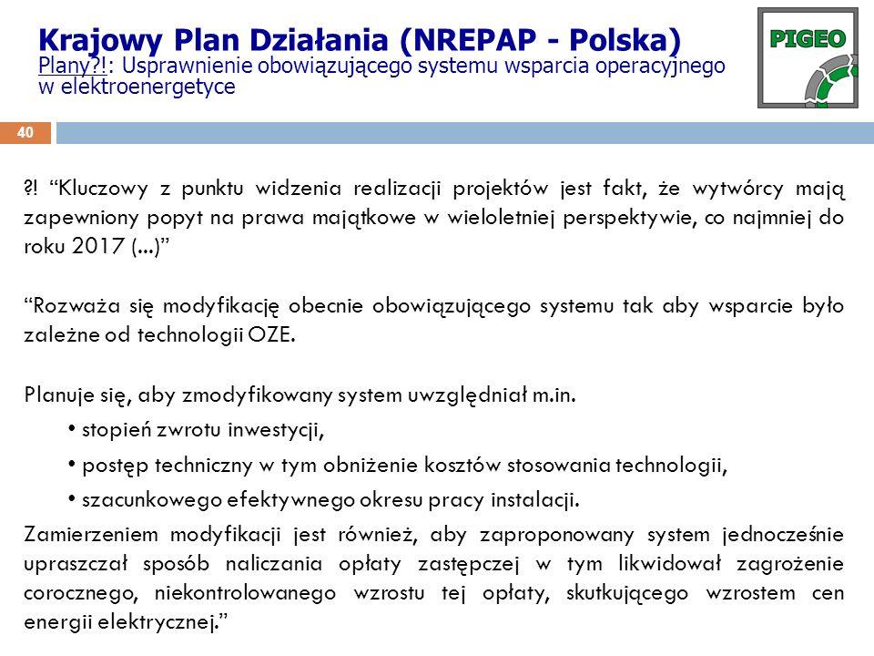 Krajowy Plan Działania (NREPAP - Polska)