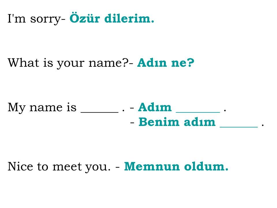 I m sorry- Özür dilerim. What is your name - Adın ne My name is ______ . - Adım _______ . - Benim adım ______ .