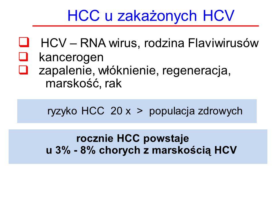 HCV – RNA wirus, rodzina Flaviwirusów