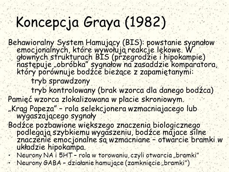 Koncepcja Graya (1982)