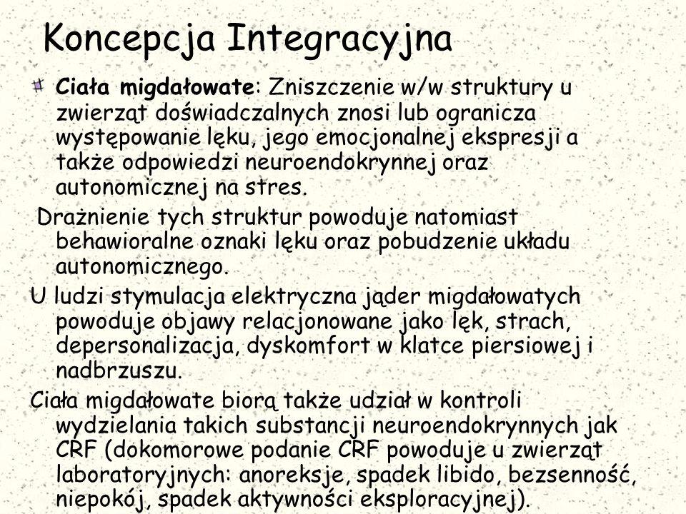 Koncepcja Integracyjna