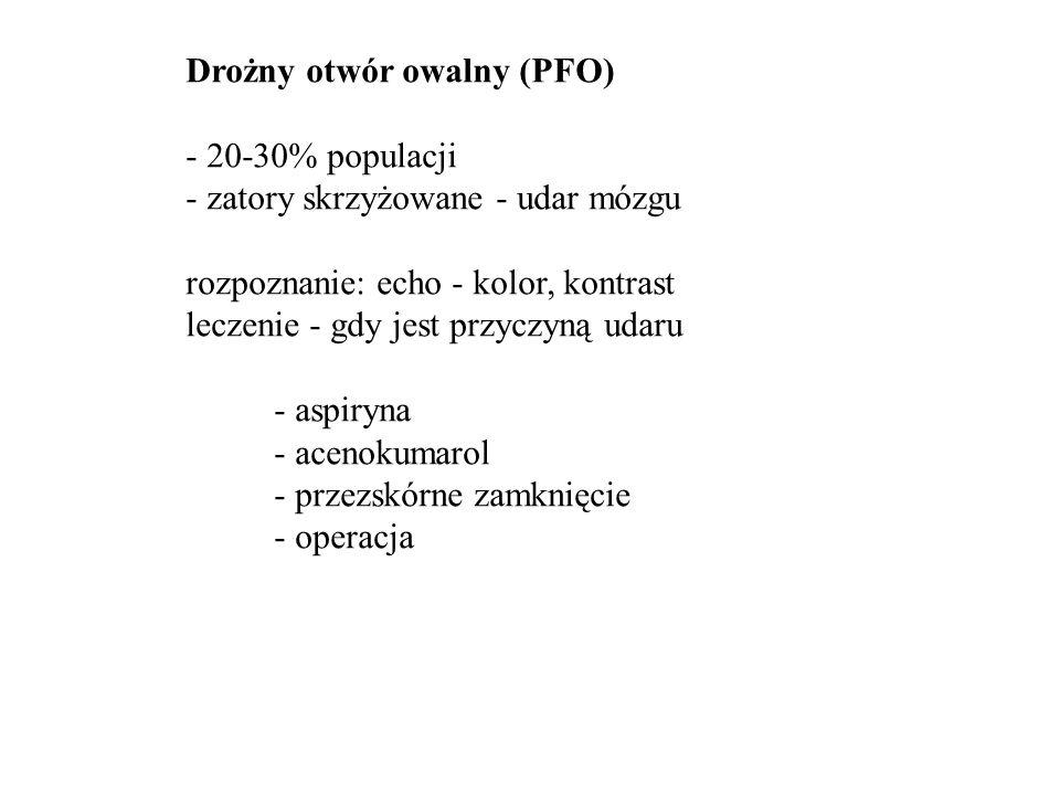 Drożny otwór owalny (PFO)