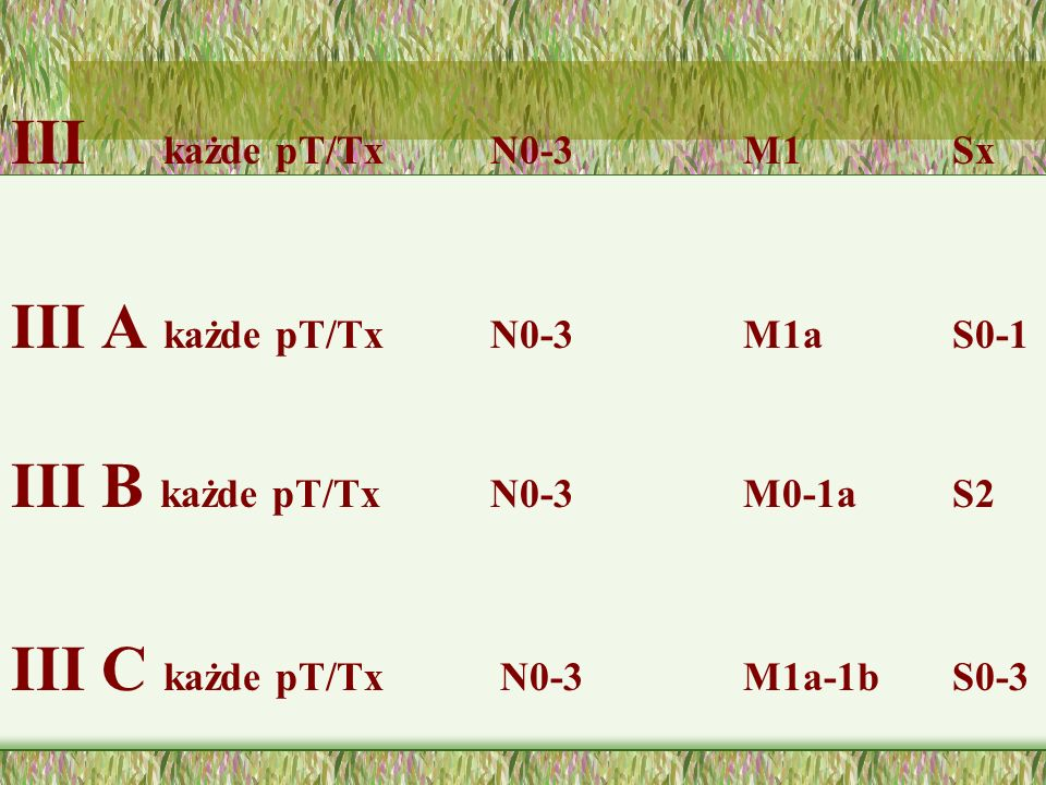 III każde pT/Tx N0-3 M1 Sx III A każde pT/Tx N0-3 M1a S0-1. III B każde pT/Tx N0-3 M0-1a S2.