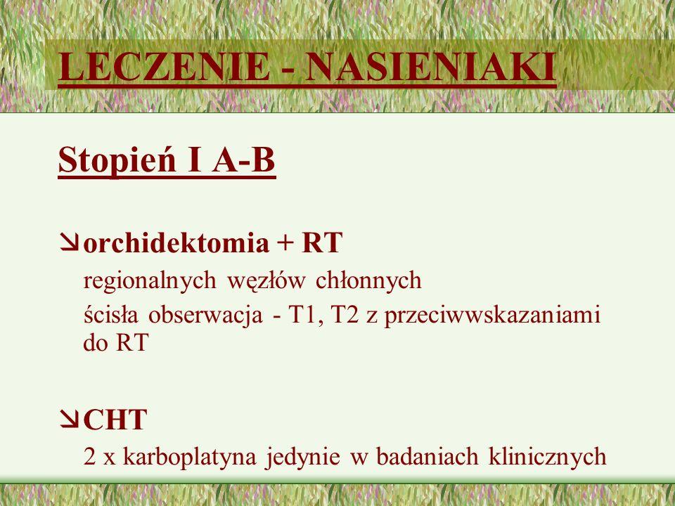 LECZENIE - NASIENIAKI Stopień I A-B orchidektomia + RT CHT