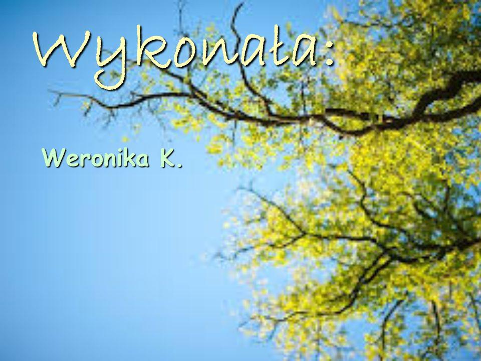 Wykonała: Weronika K.