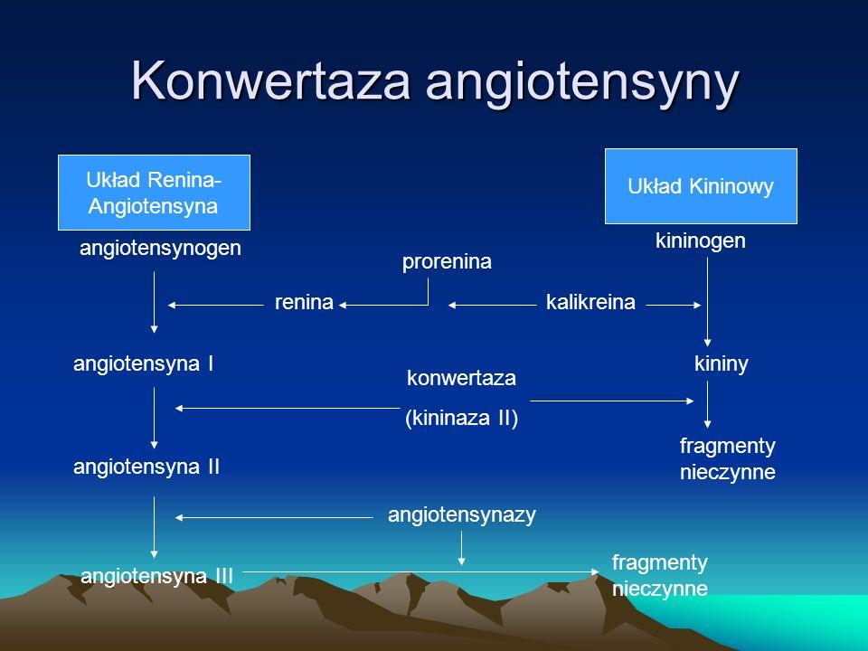 Konwertaza angiotensyny