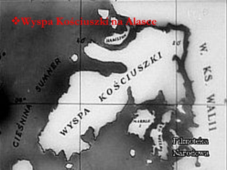 Wyspa Kościuszki na Alasce