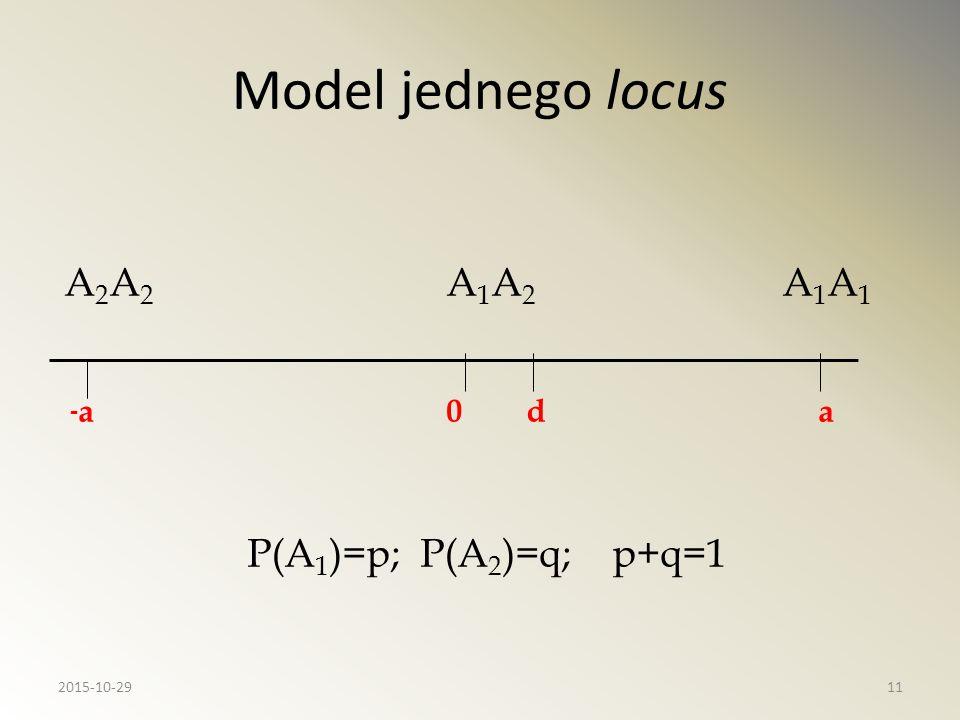 Model jednego locus A2A2 A1A2 A1A1 -a 0 d a P(A1)=p; P(A2)=q; p+q=1