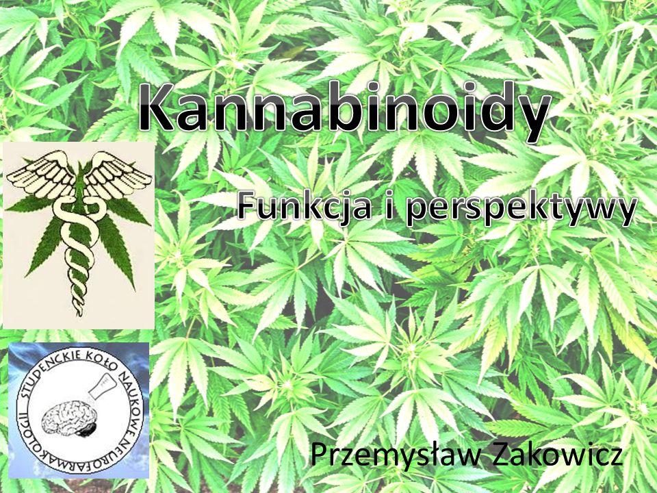 Kannabinoidy Funkcja i perspektywy Przemysław Zakowicz