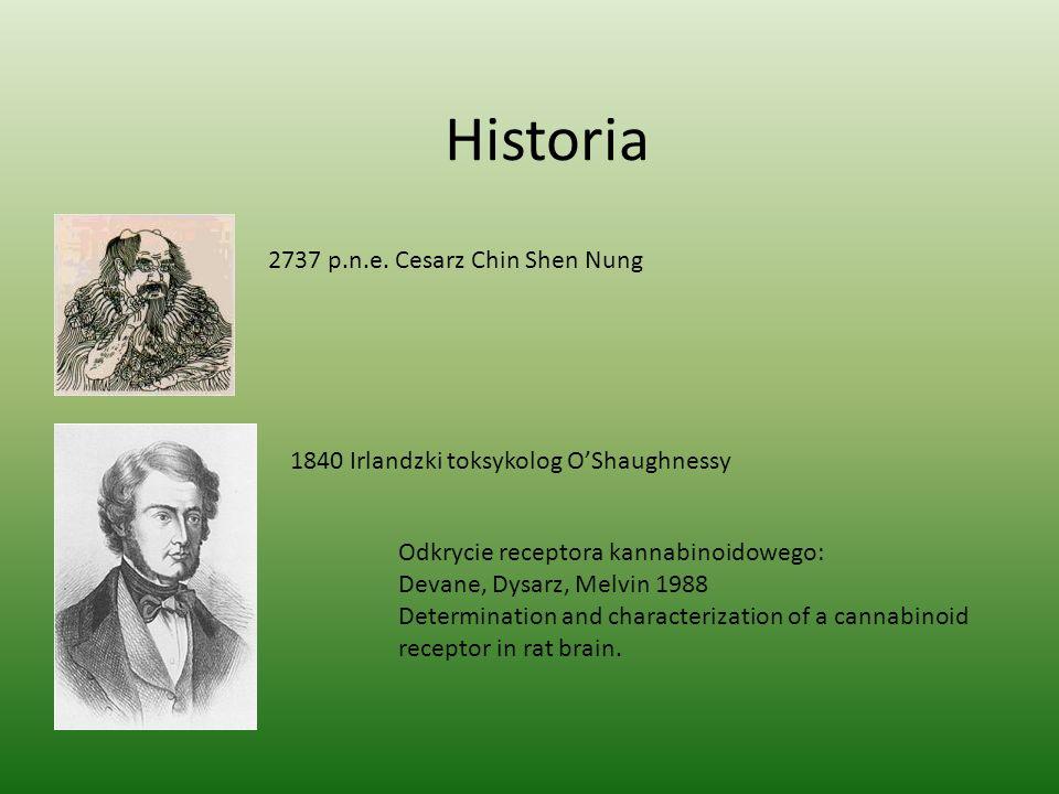 Historia 2737 p.n.e. Cesarz Chin Shen Nung