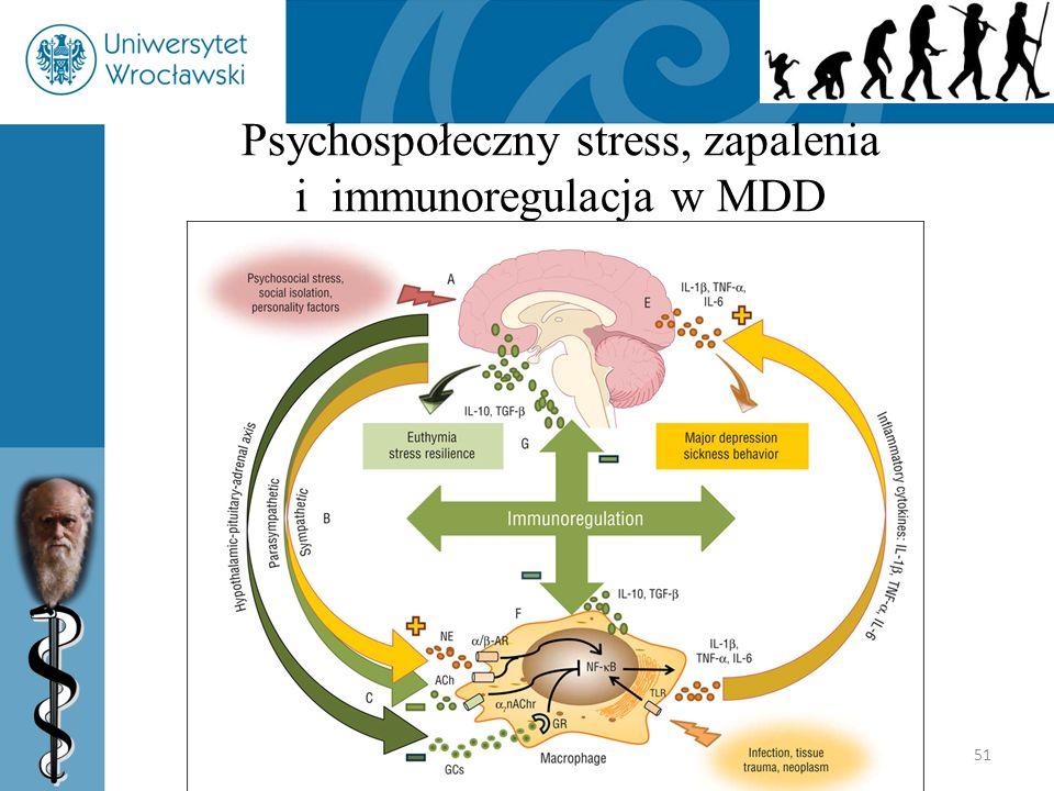 Psychospołeczny stress, zapalenia i immunoregulacja w MDD