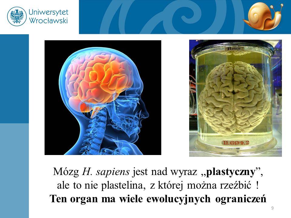 Ten organ ma wiele ewolucyjnych ograniczeń