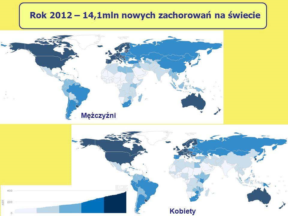 Rok 2012 – 14,1mln nowych zachorowań na świecie