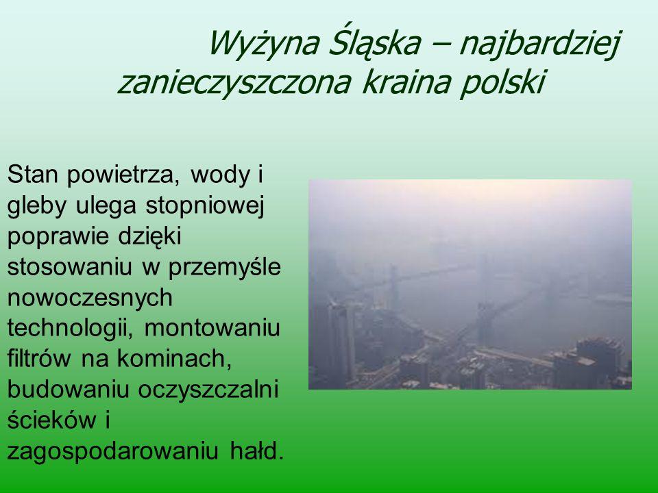 Wyżyna Śląska – najbardziej zanieczyszczona kraina polski
