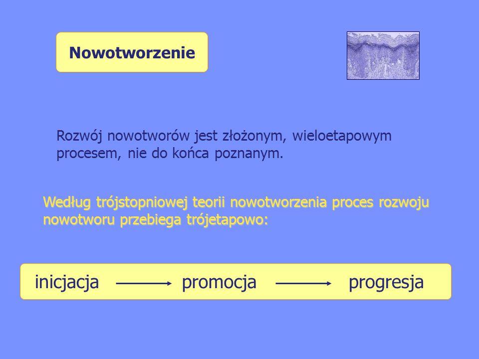inicjacja promocja progresja Nowotworzenie
