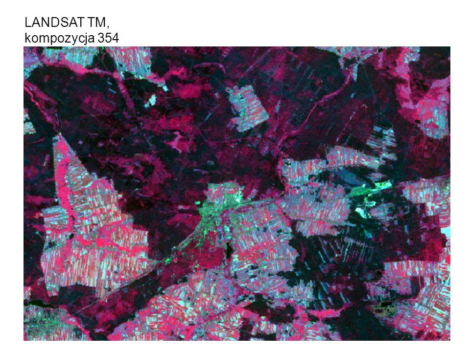 LANDSAT TM, kompozycja 354