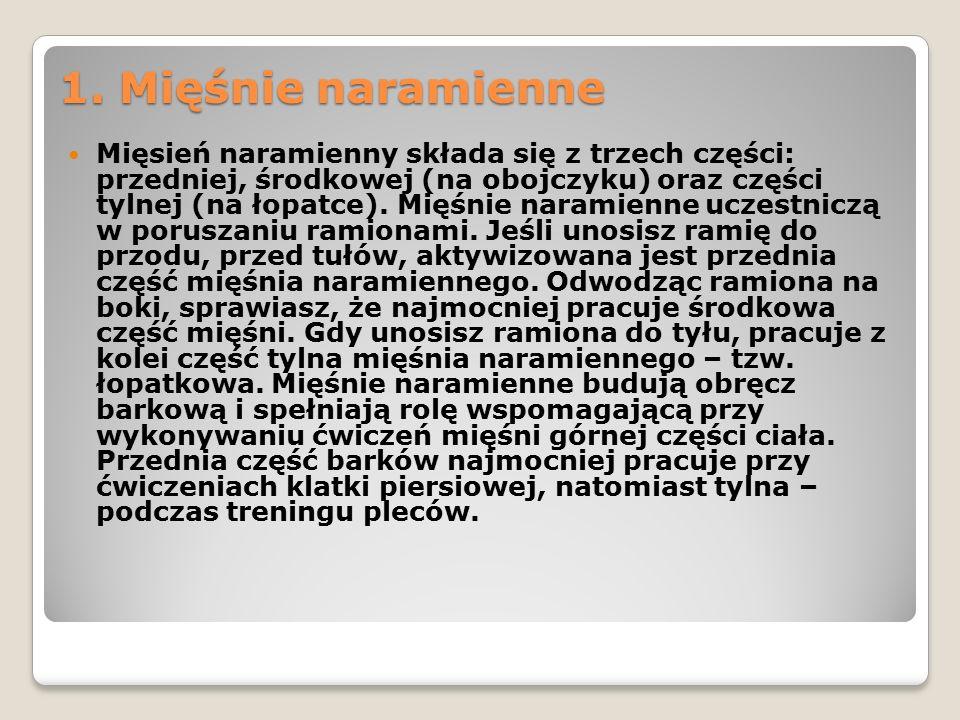1. Mięśnie naramienne