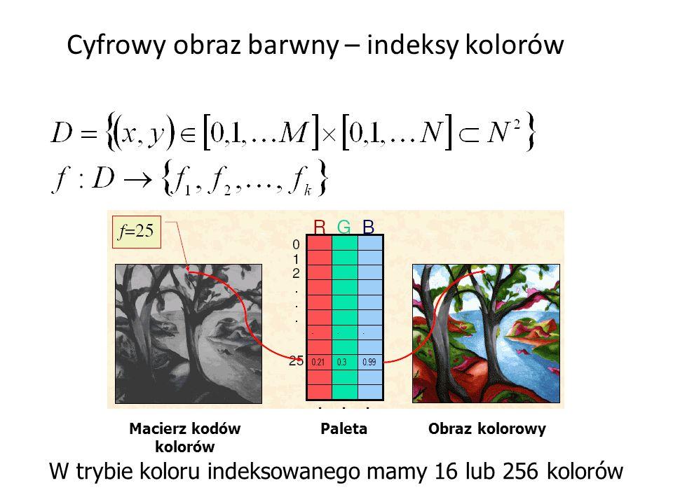 Cyfrowy obraz barwny – indeksy kolorów