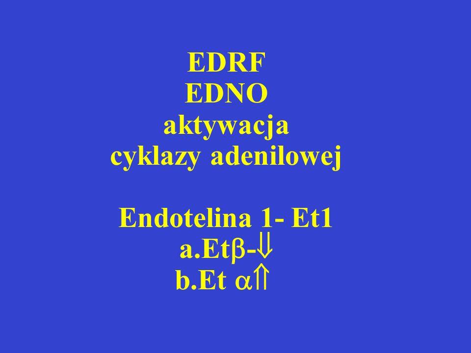 EDRF EDNO aktywacja cyklazy adenilowej Endotelina 1- Et1 a. Et- b
