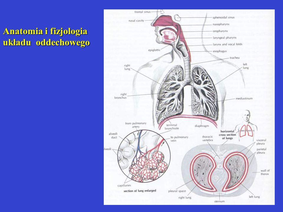 Anatomia i fizjologia układu oddechowego