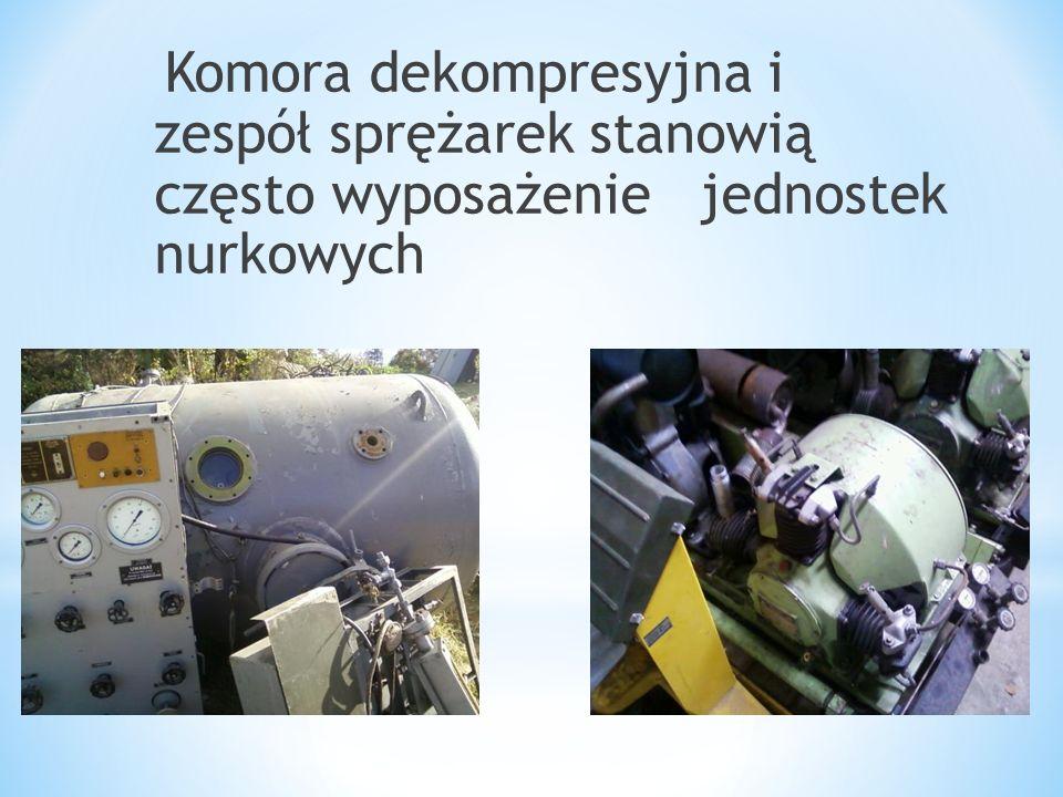 Komora dekompresyjna i zespół sprężarek stanowią często wyposażenie jednostek nurkowych