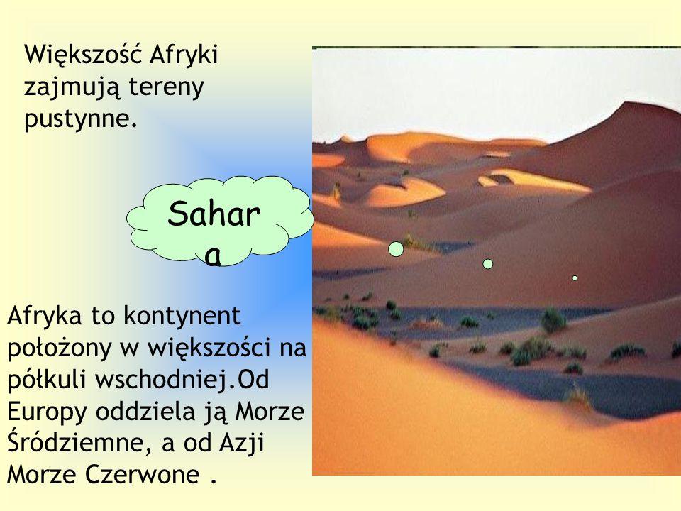 Sahara Większość Afryki zajmują tereny pustynne.