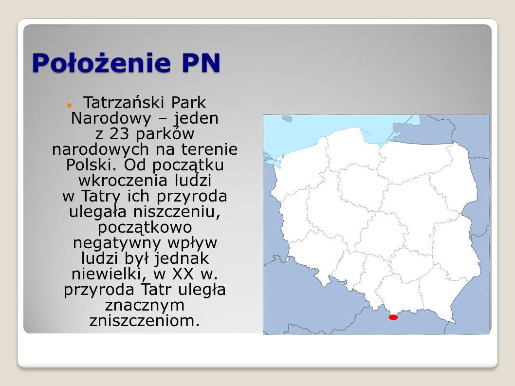 Położenie PN