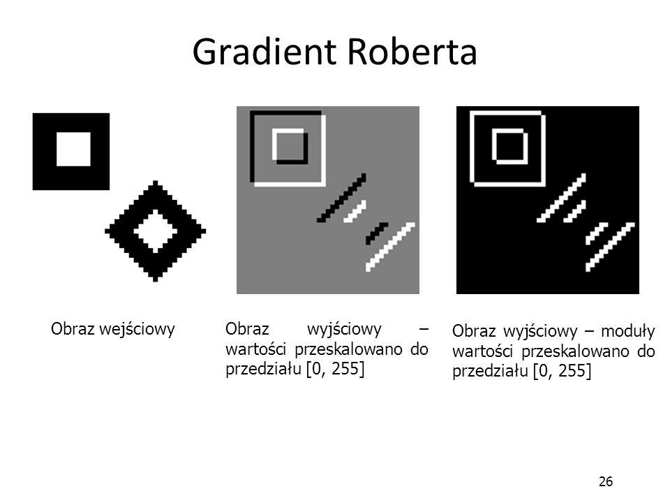 Gradient Roberta Obraz wejściowy