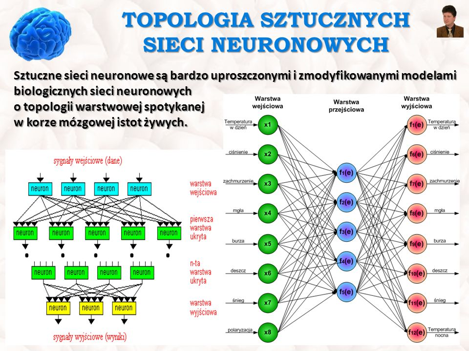 TOPOLOGIA SZTUCZNYCH SIECI NEURONOWYCH