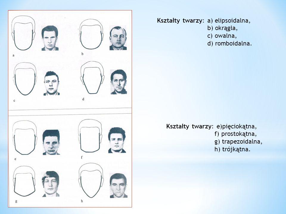Kształty twarzy: a) elipsoidalna,