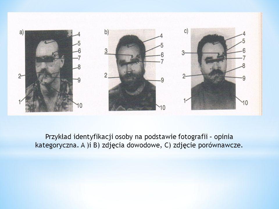 Przykład identyfikacji osoby na podstawie fotografii – opinia kategoryczna.