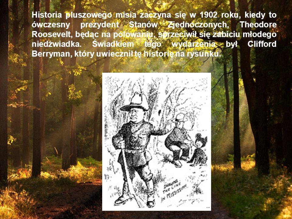 Historia pluszowego misia zaczyna się w 1902 roku, kiedy to ówczesny prezydent Stanów Zjednoczonych, Theodore Roosevelt, będąc na polowaniu, sprzeciwił się zabiciu młodego niedźwiadka.