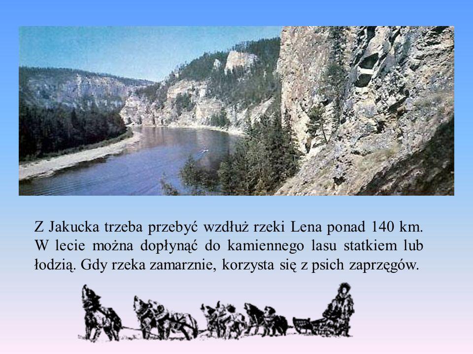 Z Jakucka trzeba przebyć wzdłuż rzeki Lena ponad 140 km