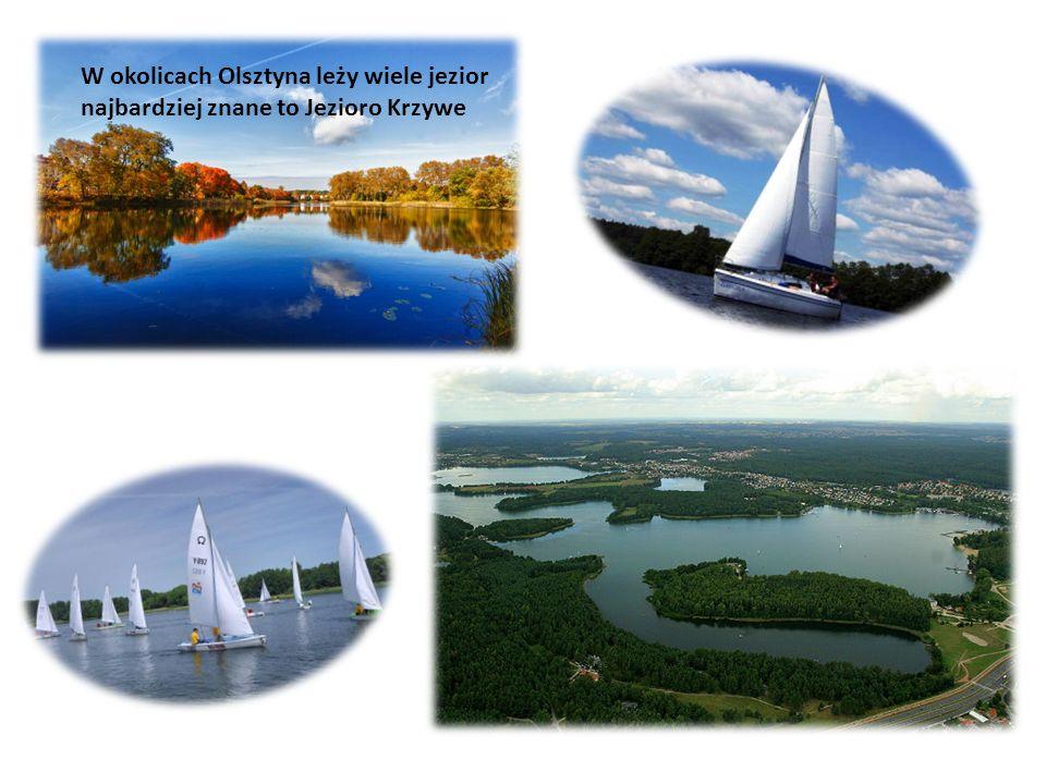 W okolicach Olsztyna leży wiele jezior najbardziej znane to Jezioro Krzywe