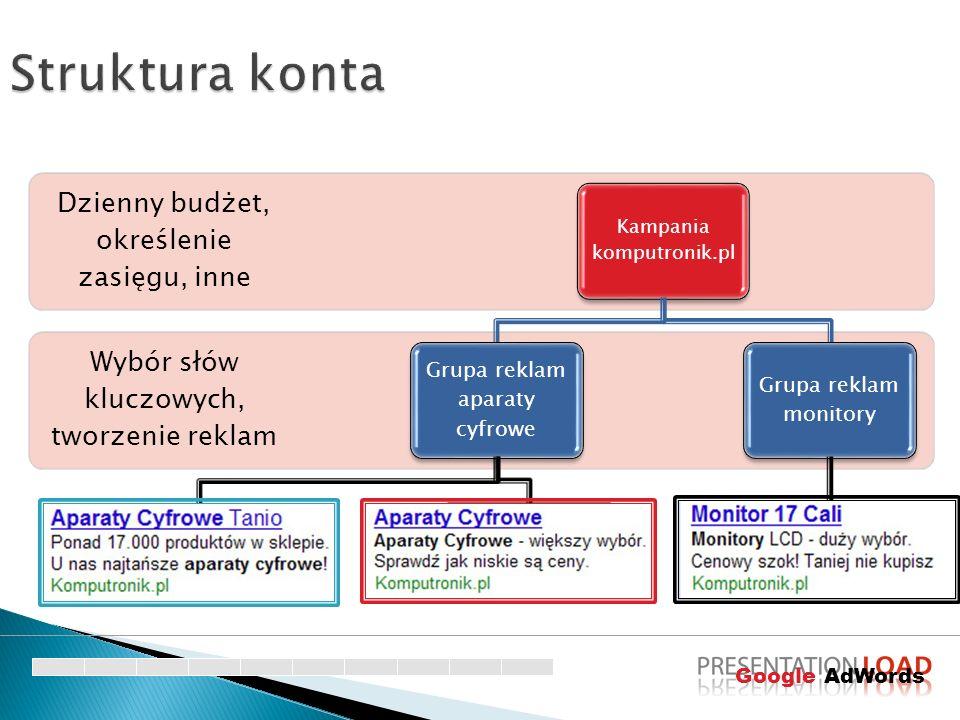 Struktura konta Dzienny budżet, określenie zasięgu, inne