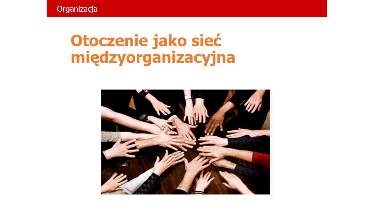 Otoczenie jako sieć międzyorganizacyjna