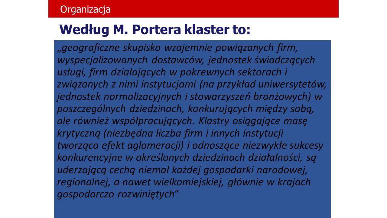 Według M. Portera klaster to: