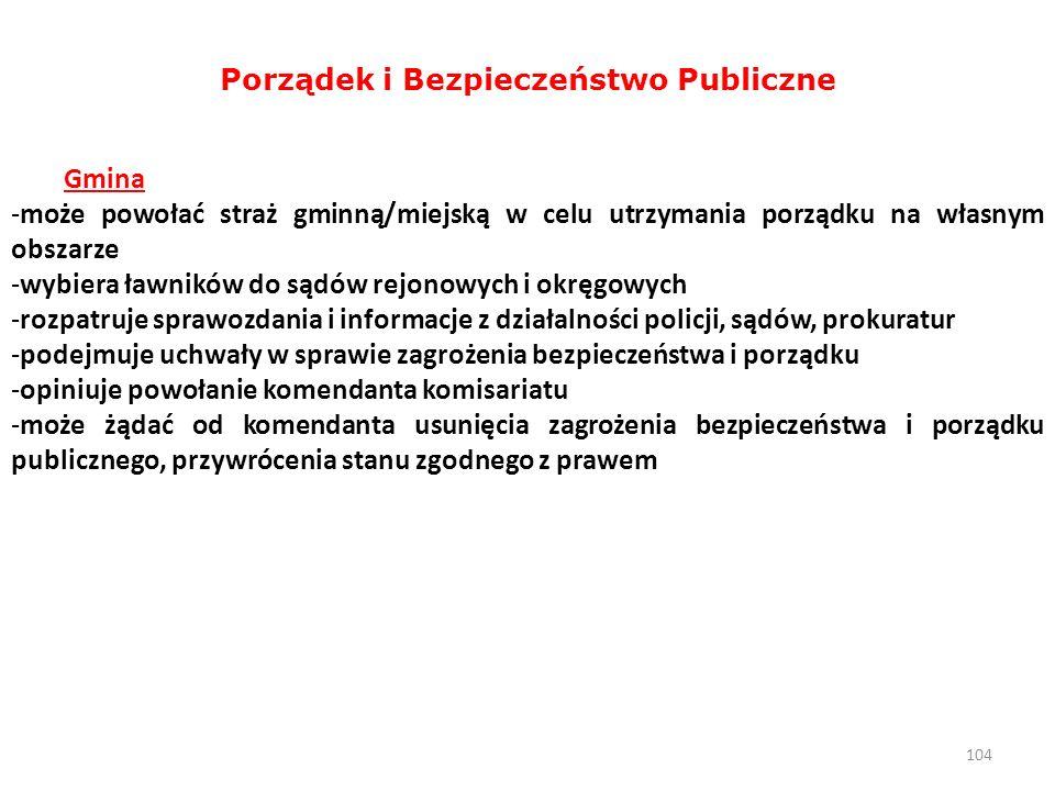 Porządek i Bezpieczeństwo Publiczne