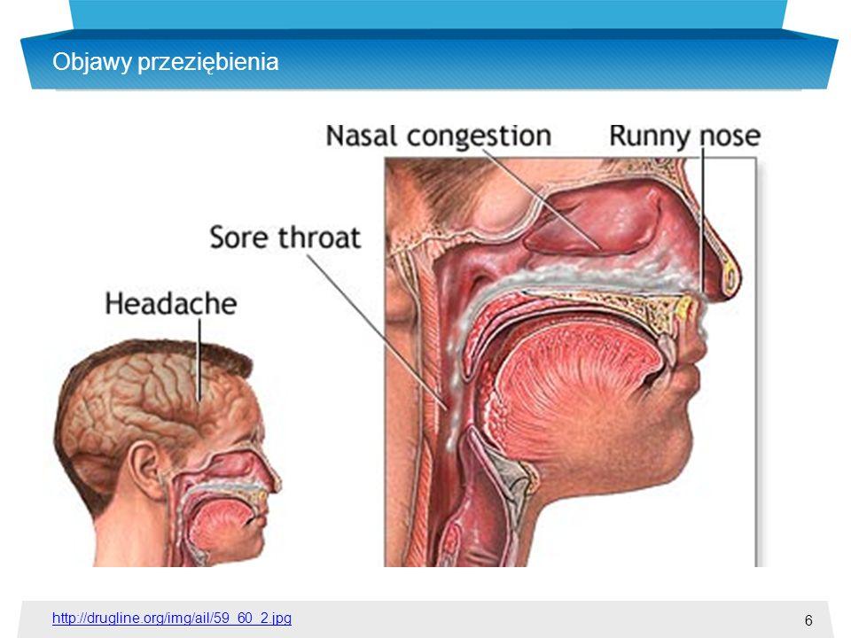 Objawy przeziębienia http://drugline.org/img/ail/59_60_2.jpg