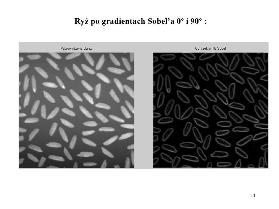 Ryż po gradientach Sobel'a 0º i 90º :