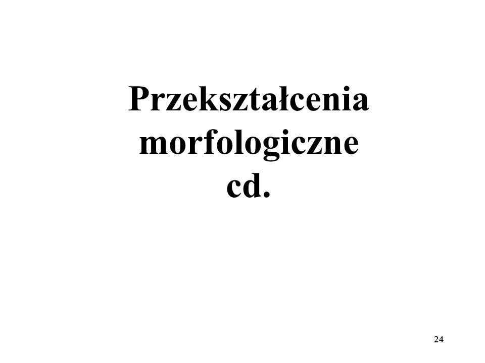 Przekształcenia morfologiczne