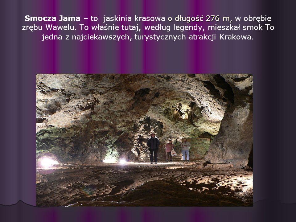 Smocza Jama – to jaskinia krasowa o długość 276 m, w obrębie zrębu Wawelu.