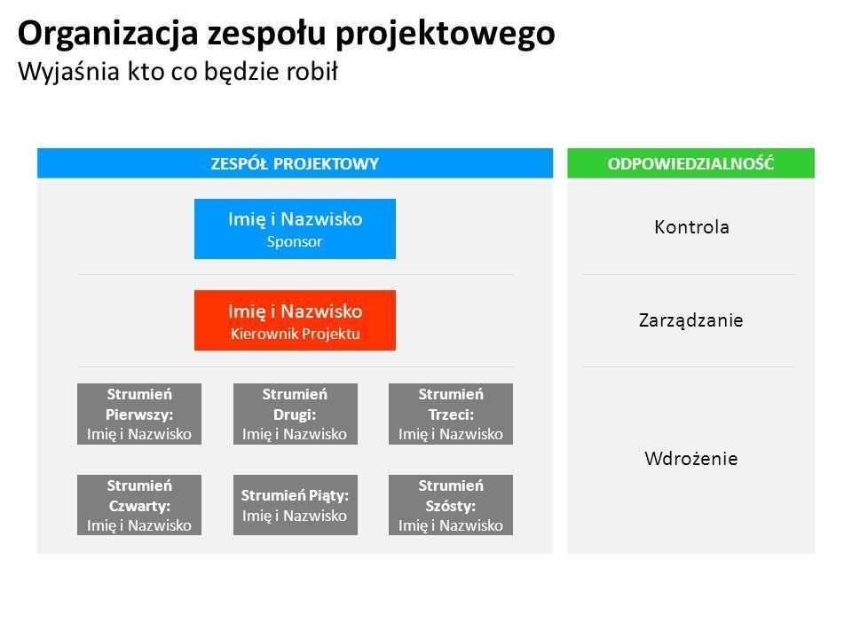 Organizacja zespołu projektowego